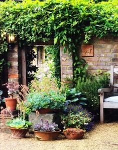 pots eng garden july 2011 comp 2