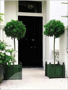 topiary-ball-trees