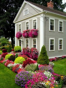 window-boxes-5th-and-state